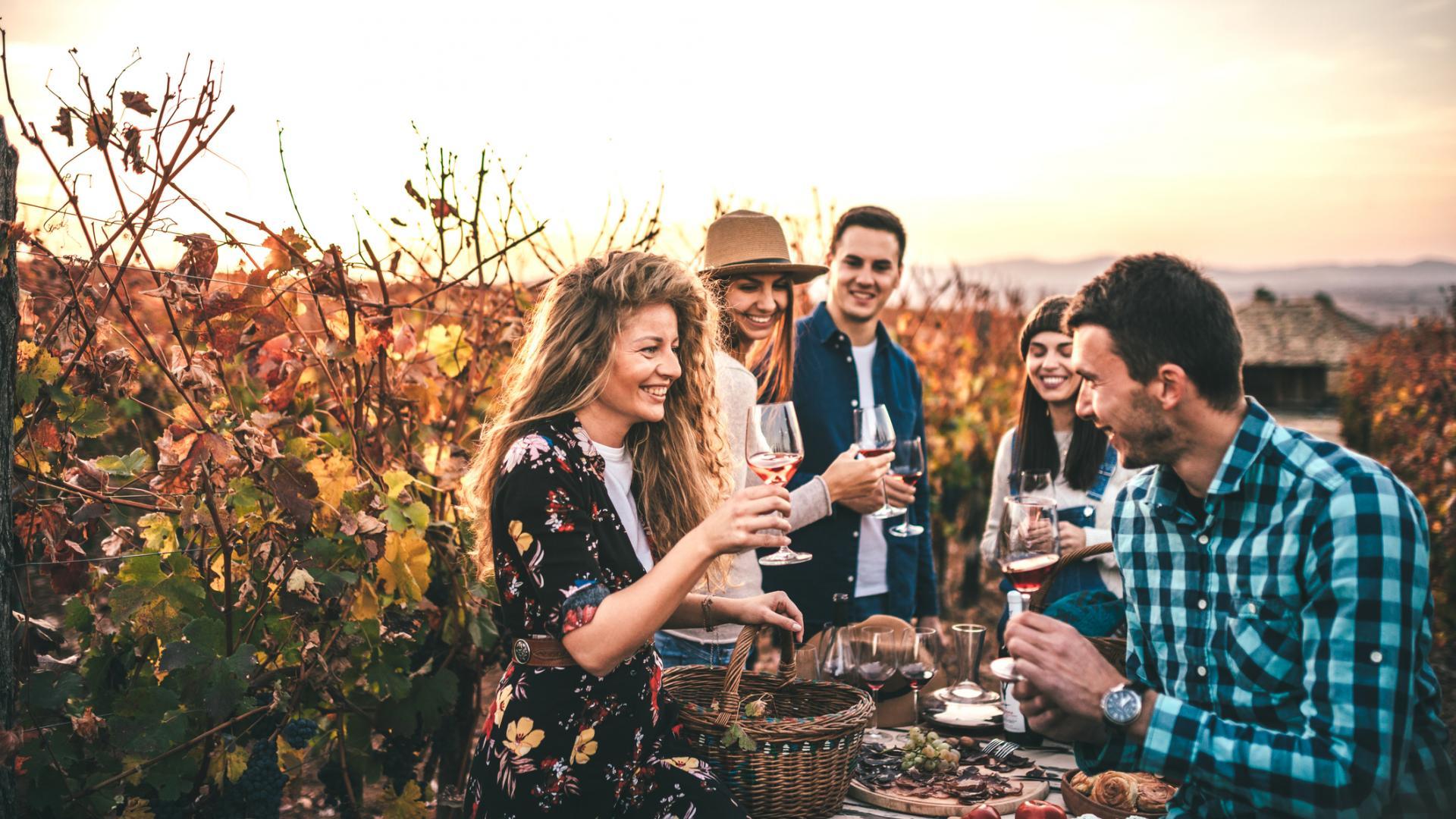 Freunde auf einem Weingut. Wine Tasting