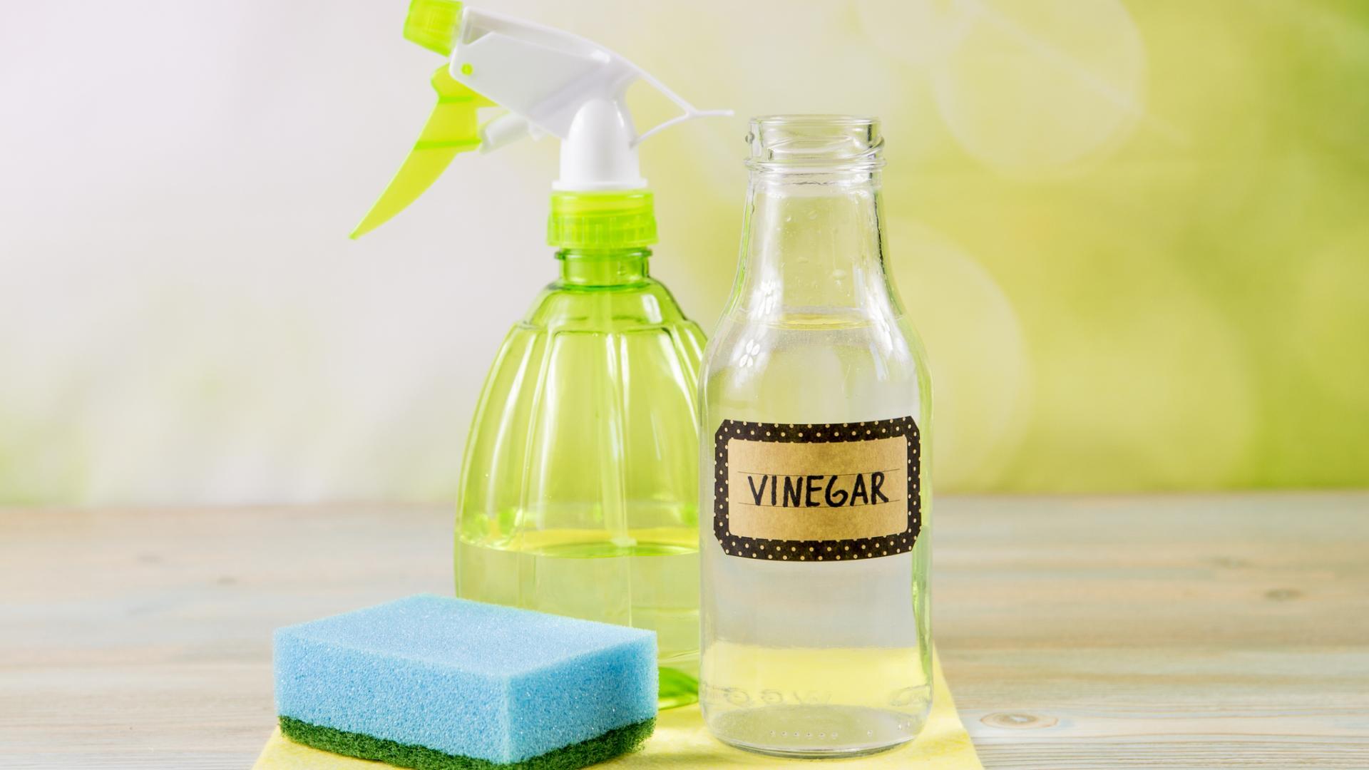 Essig Vinegar reinigung