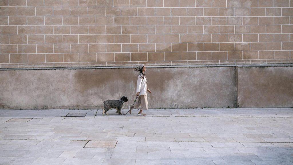 Frau Hund Spaziergang Verstoß gegen die Ausgangssperre