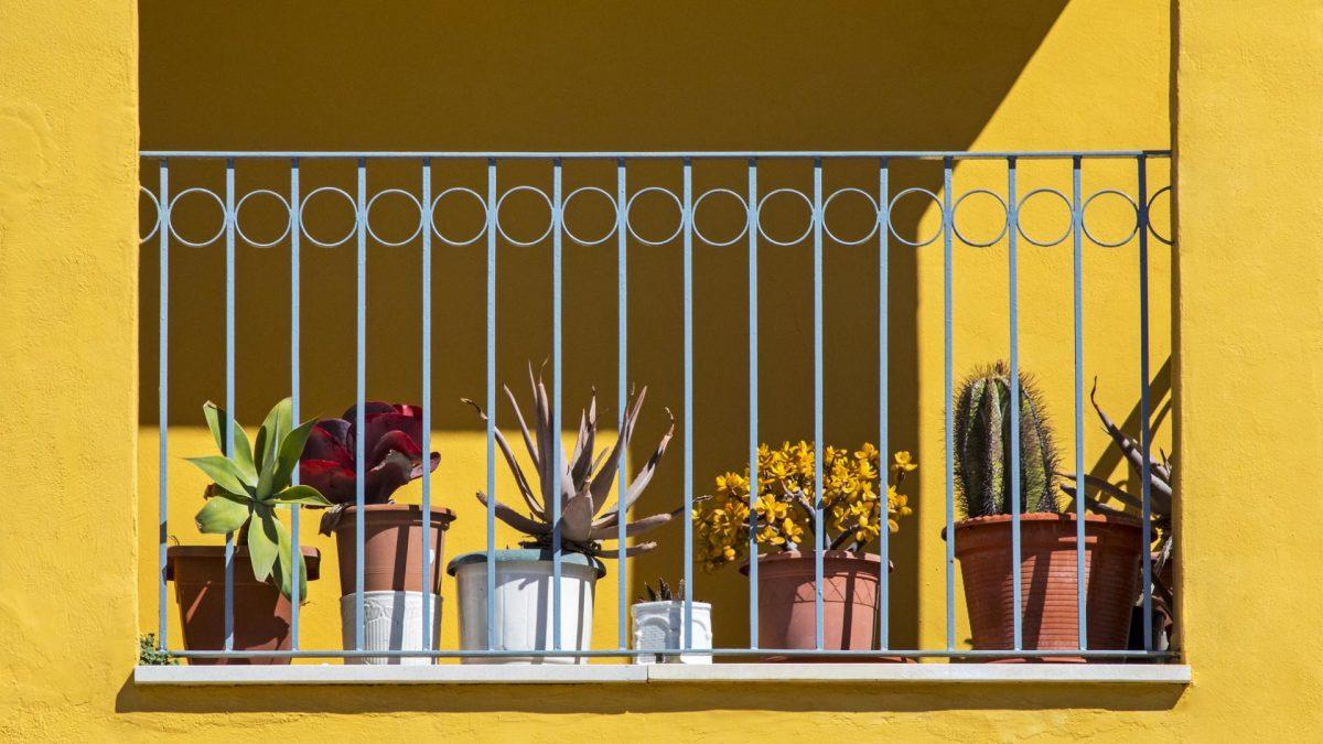 sonniger Balkon mit Pflanzen