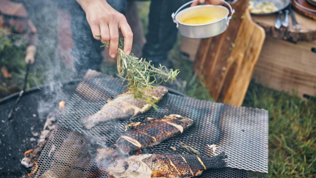 Fisch grill freunde Park Sommer