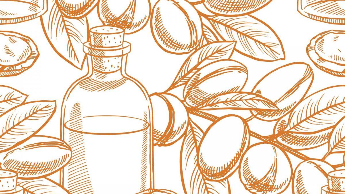 Arganöl als Zeichnung