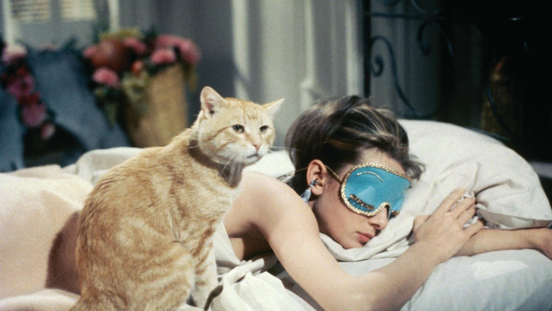 Audrey Hepburn schlafend auf dem Bett mit Katze