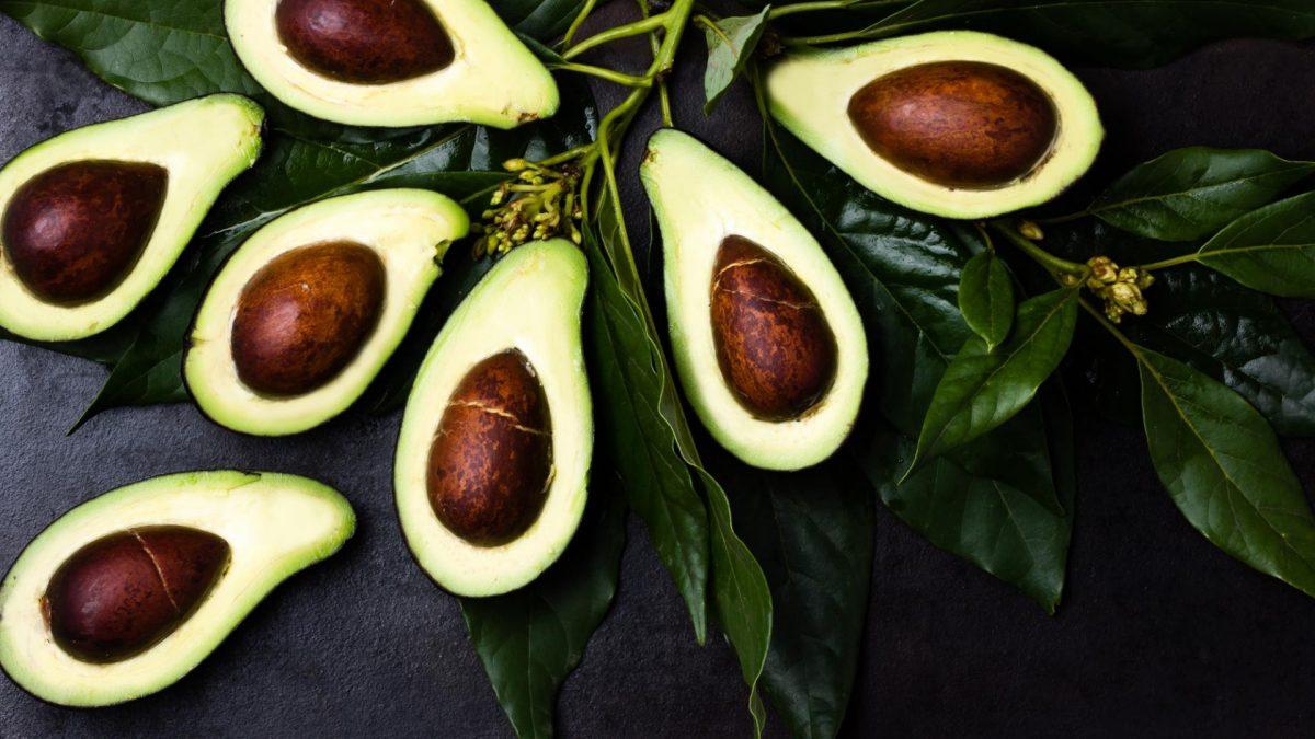 Avocados, Tisch