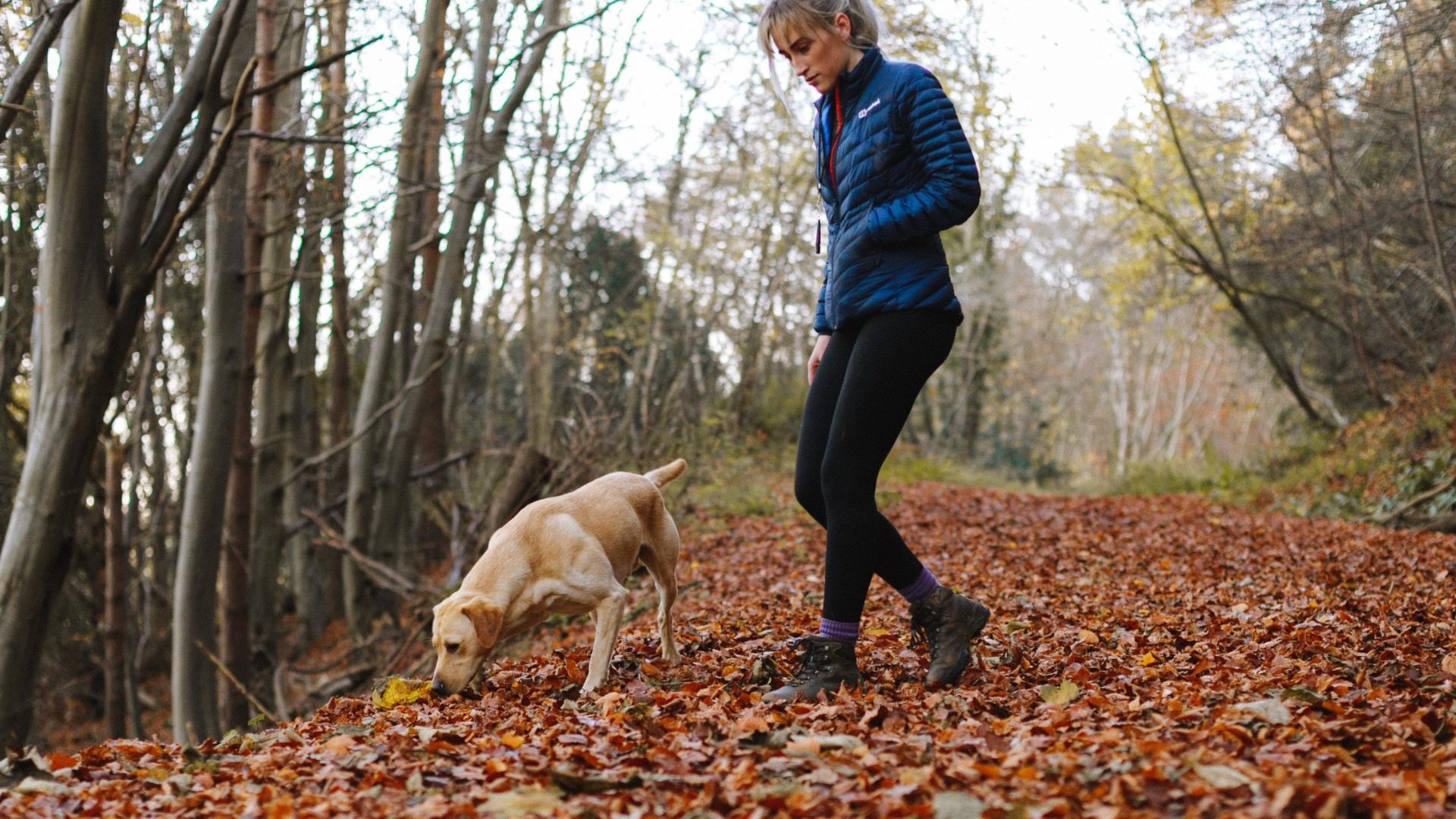 Hundehalter haben größeres Corona-Risiko
