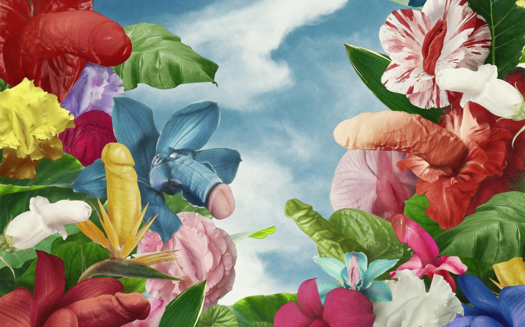 Penisformen und Penistypen als Blumen