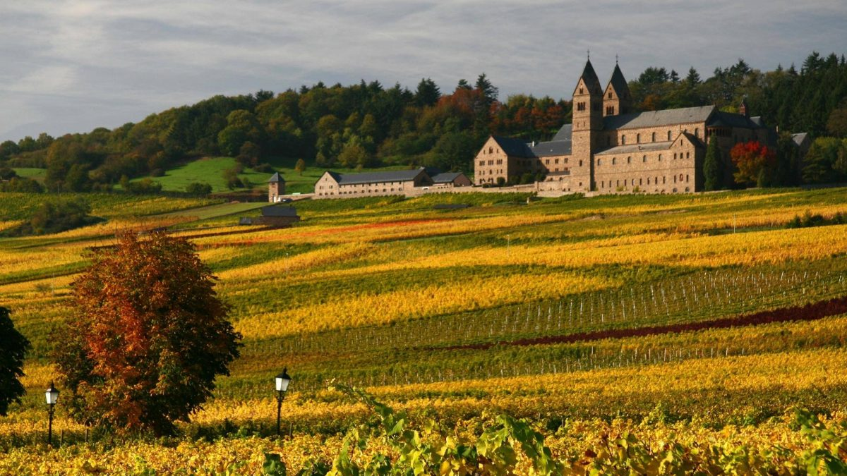Weinwanderwege Rotwein Hessen