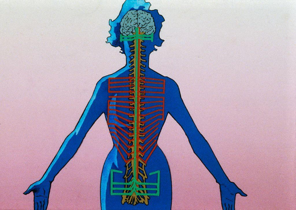 gehirn frau psyche körper psychologie flow zustand