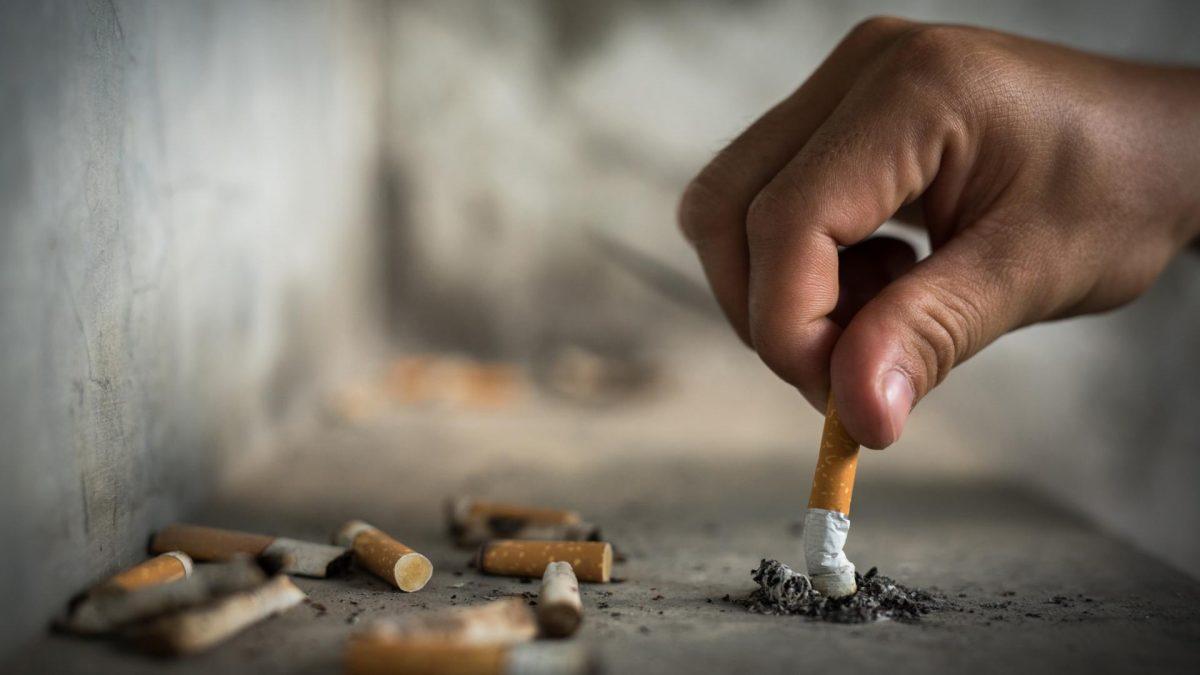 kippen Zigaretten Zigarettenstummel Asche