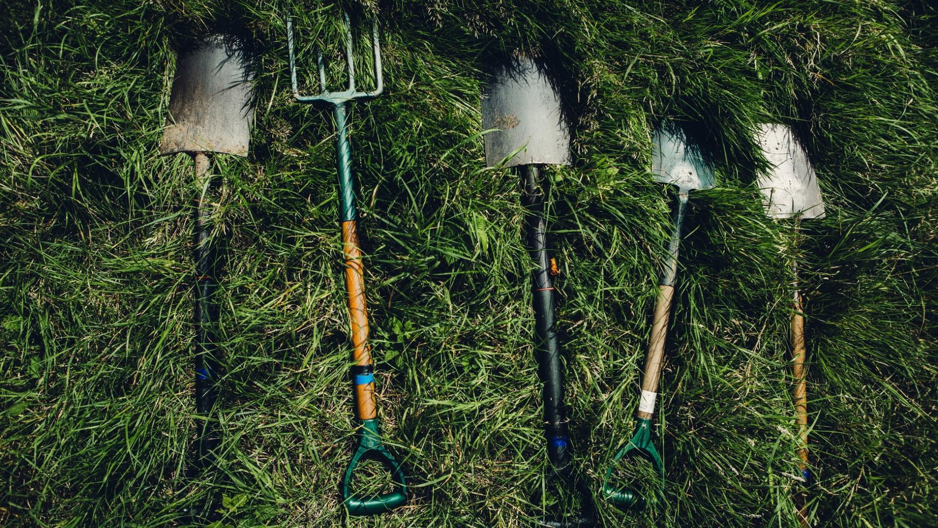 Schaufeln und Gartengeräte