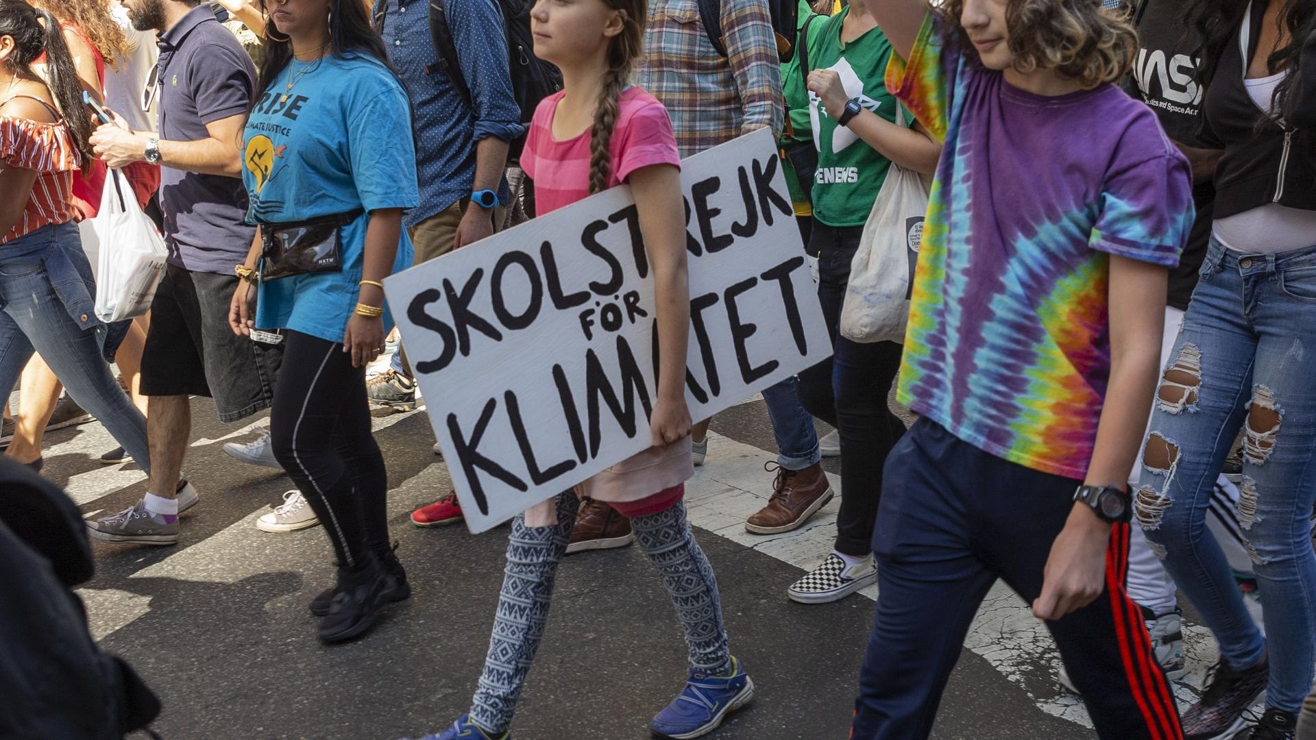 Greta Thunberg auf einem Streik
