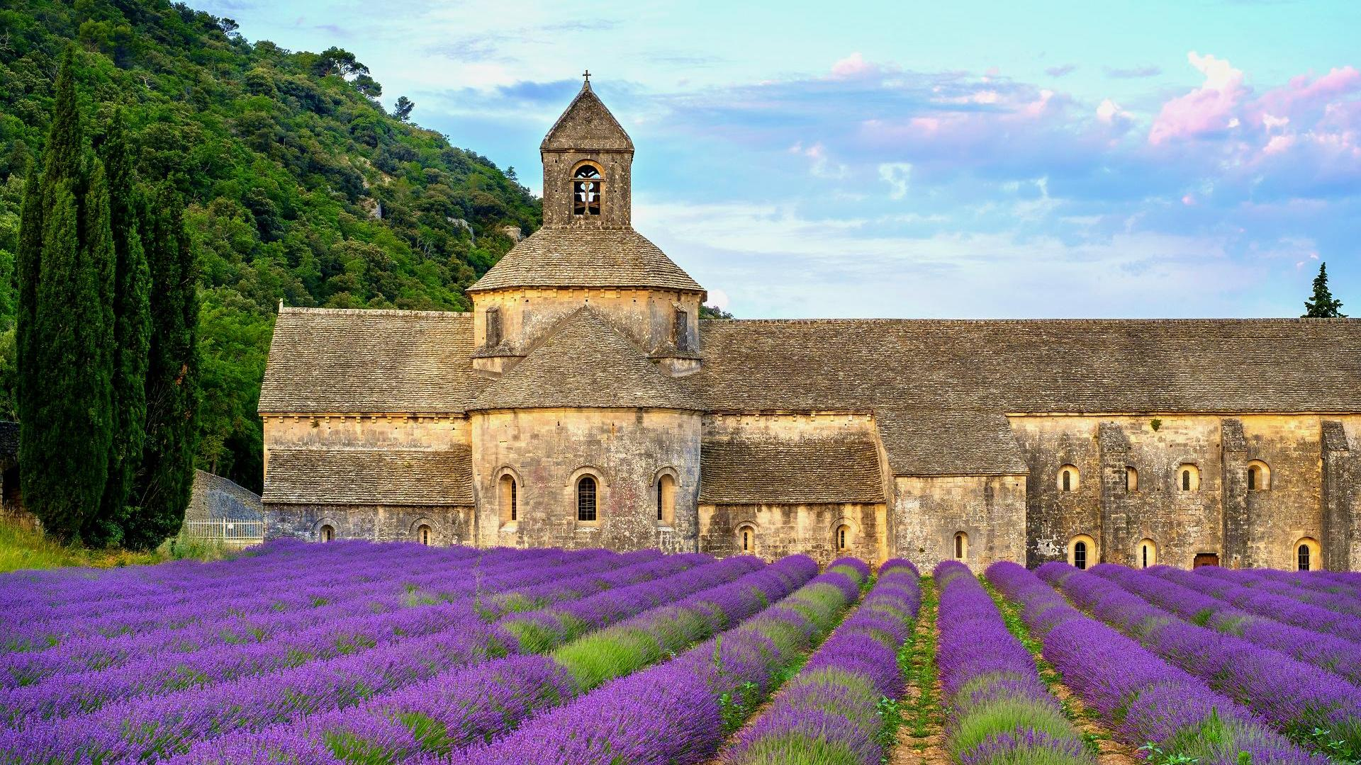 Heiraten im Ausland in der Provence auf einem Lavendelfeld