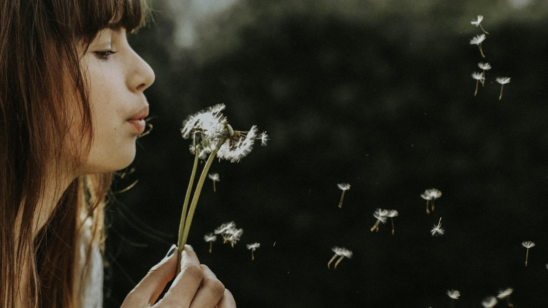 braunhaariges Mädchen pustet Pusteblume