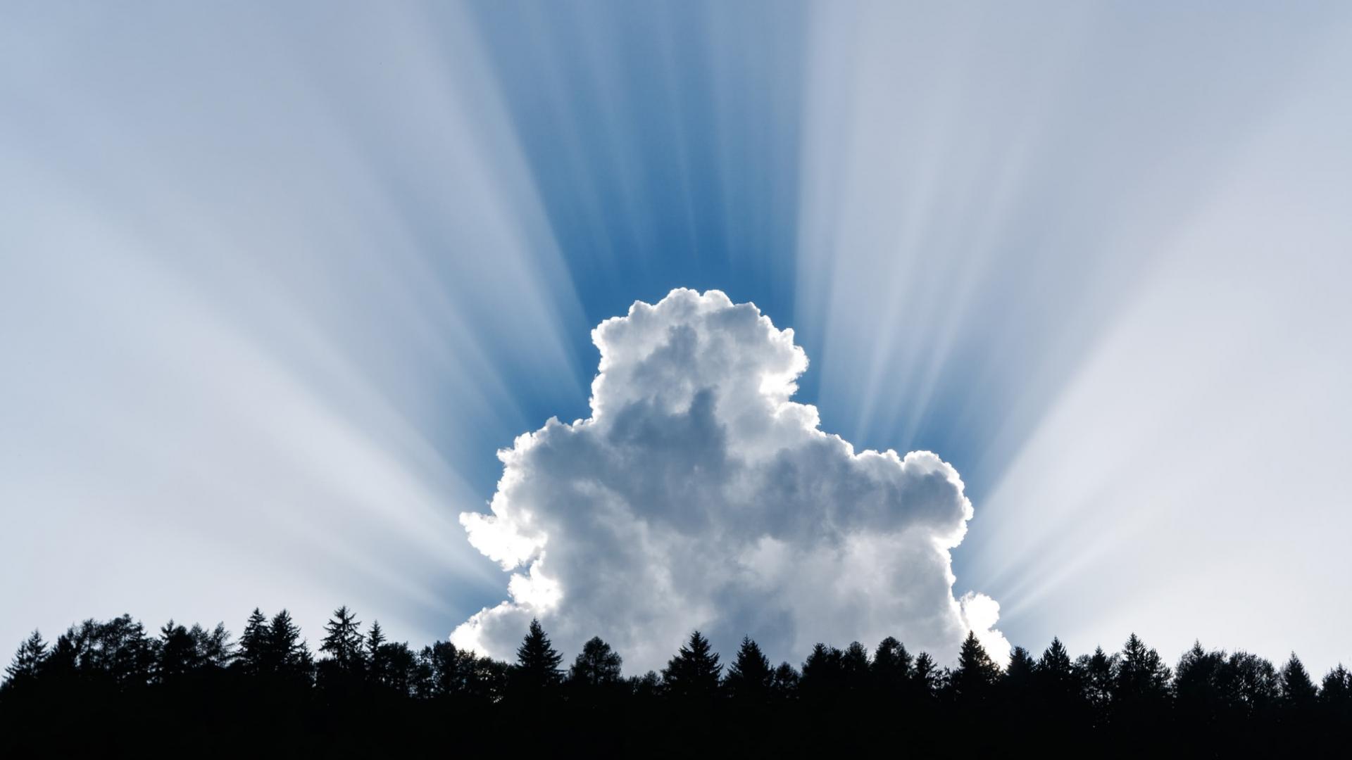 Wolken und Sonnenschein über Tannenwald