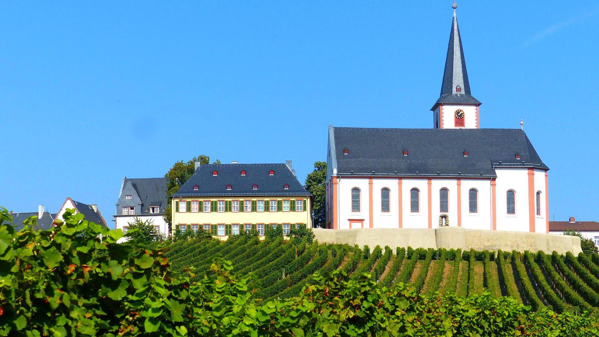 Weinwanderweg hattenheim