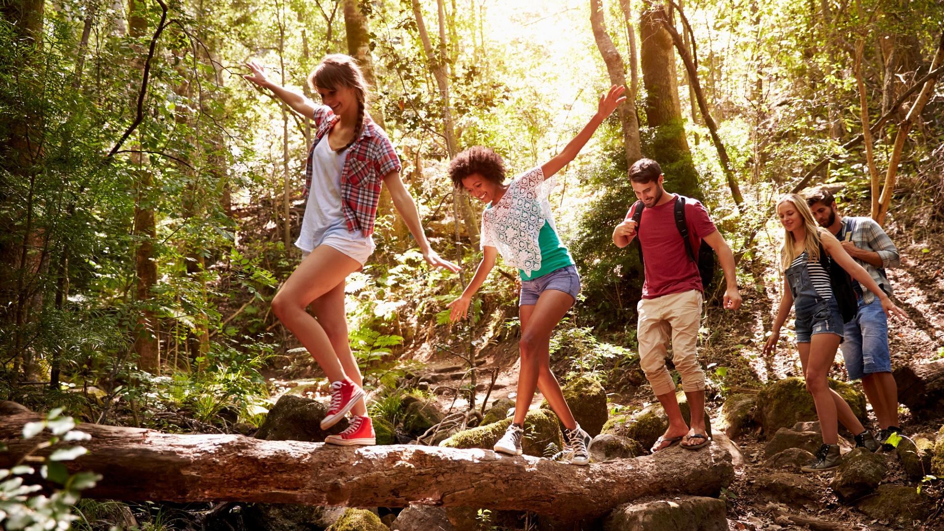 Wandern Freunde Wald