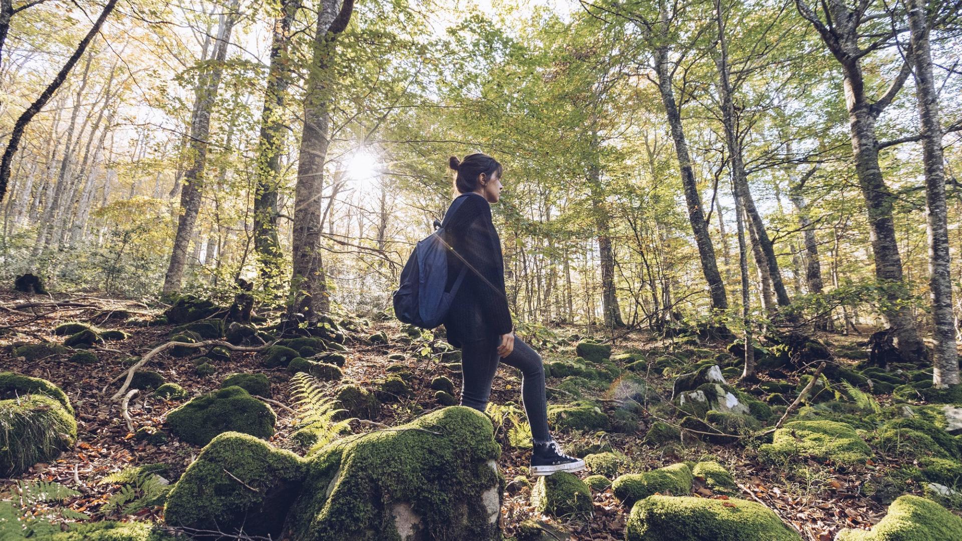 Frau Wald Spaziergang