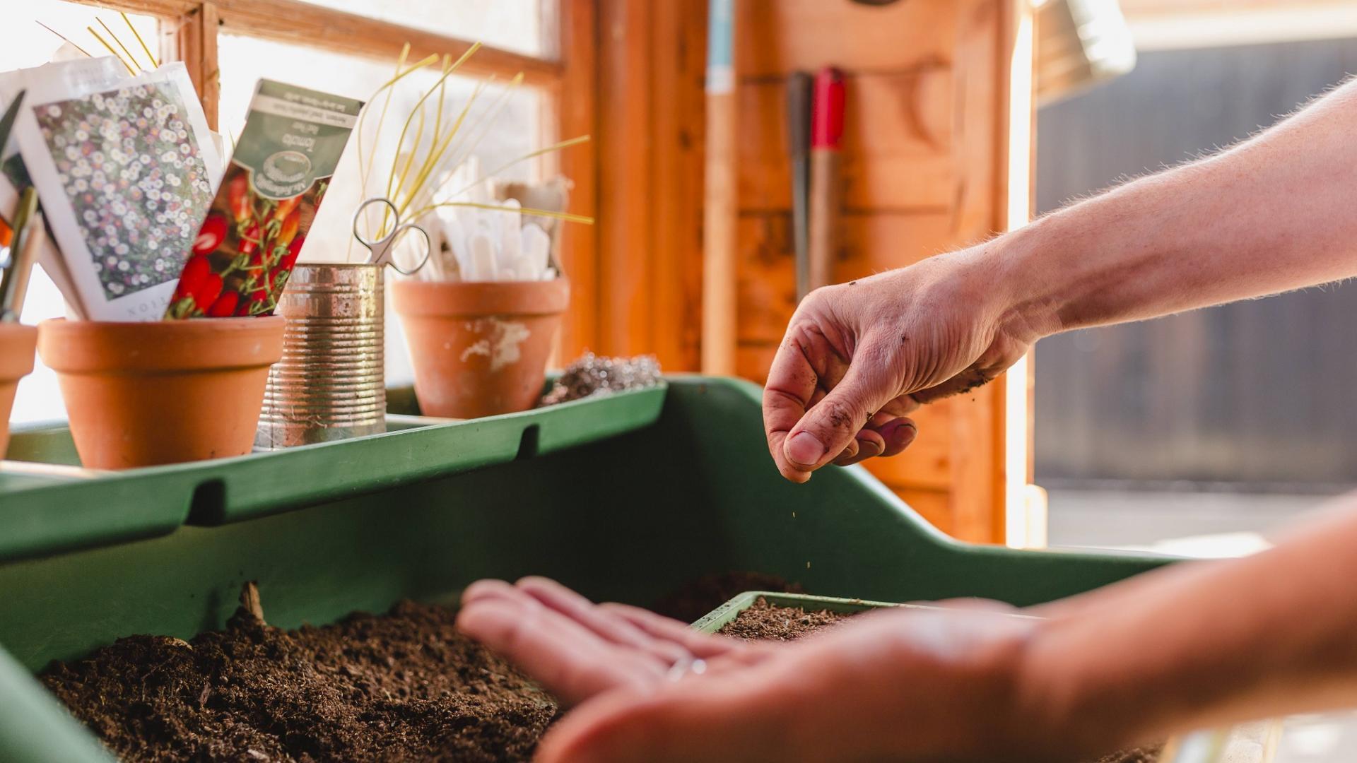 DIY LAst minute Ostergeschenke Saatmischung einpflanzen garten