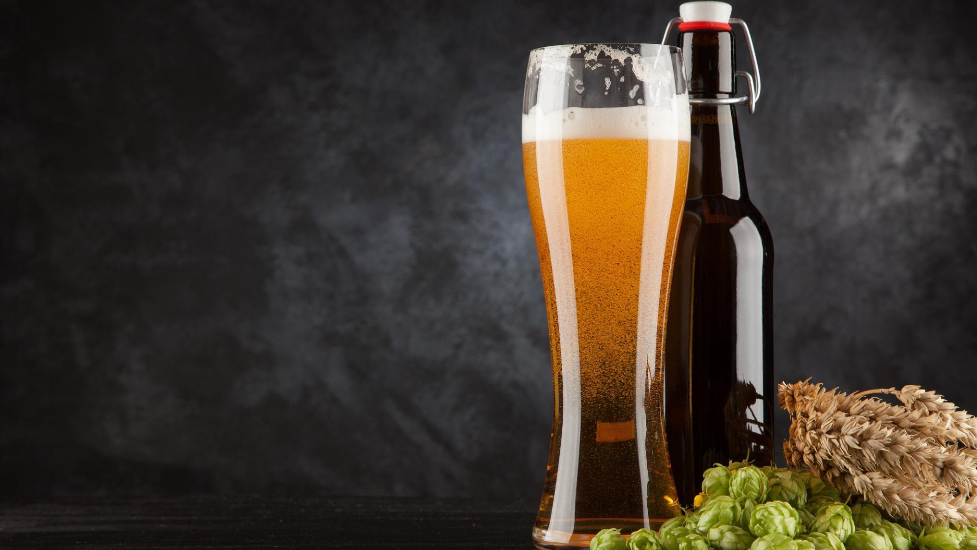 Bier Hefe Getreide