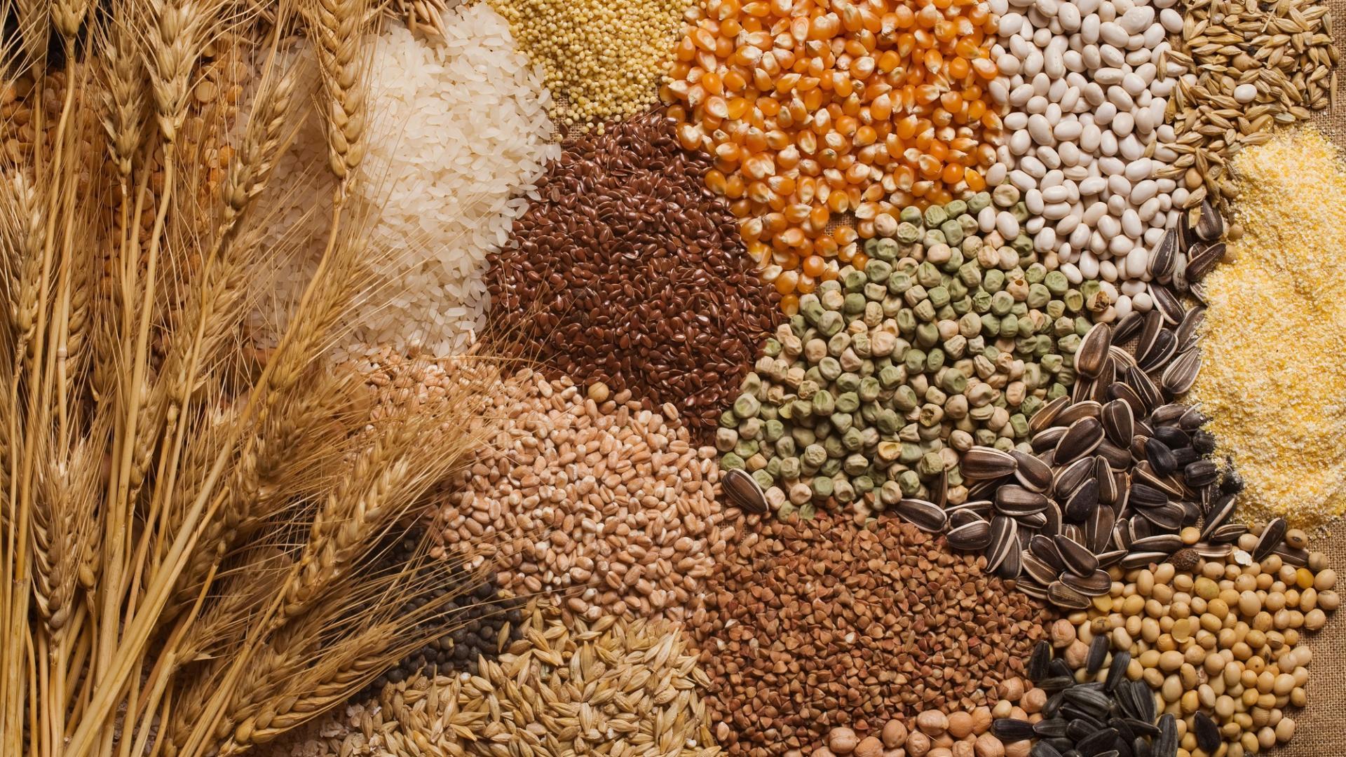 Getreide, Korn, Hafer