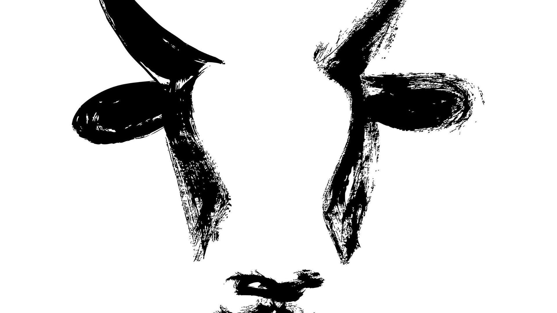 Büffel ochse zeichnung