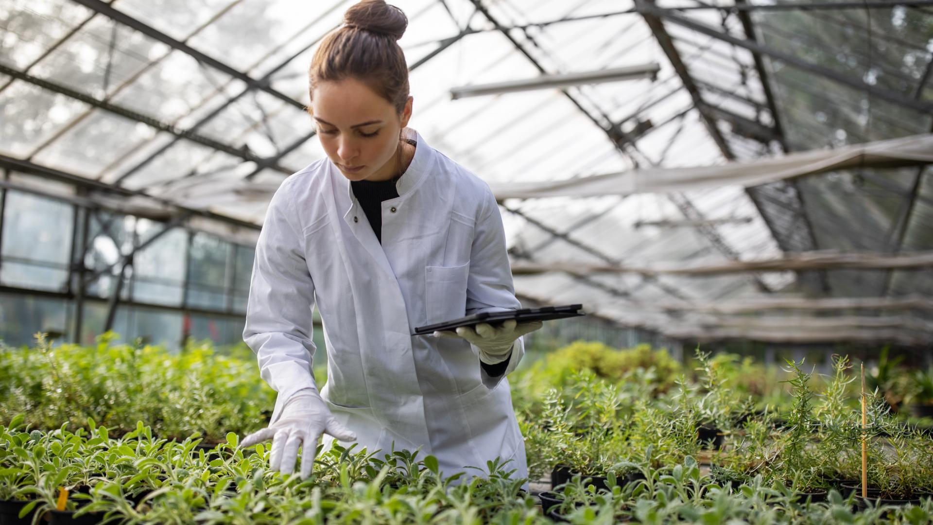 junge Frau Laborkittel Pflanzen gewächshaus