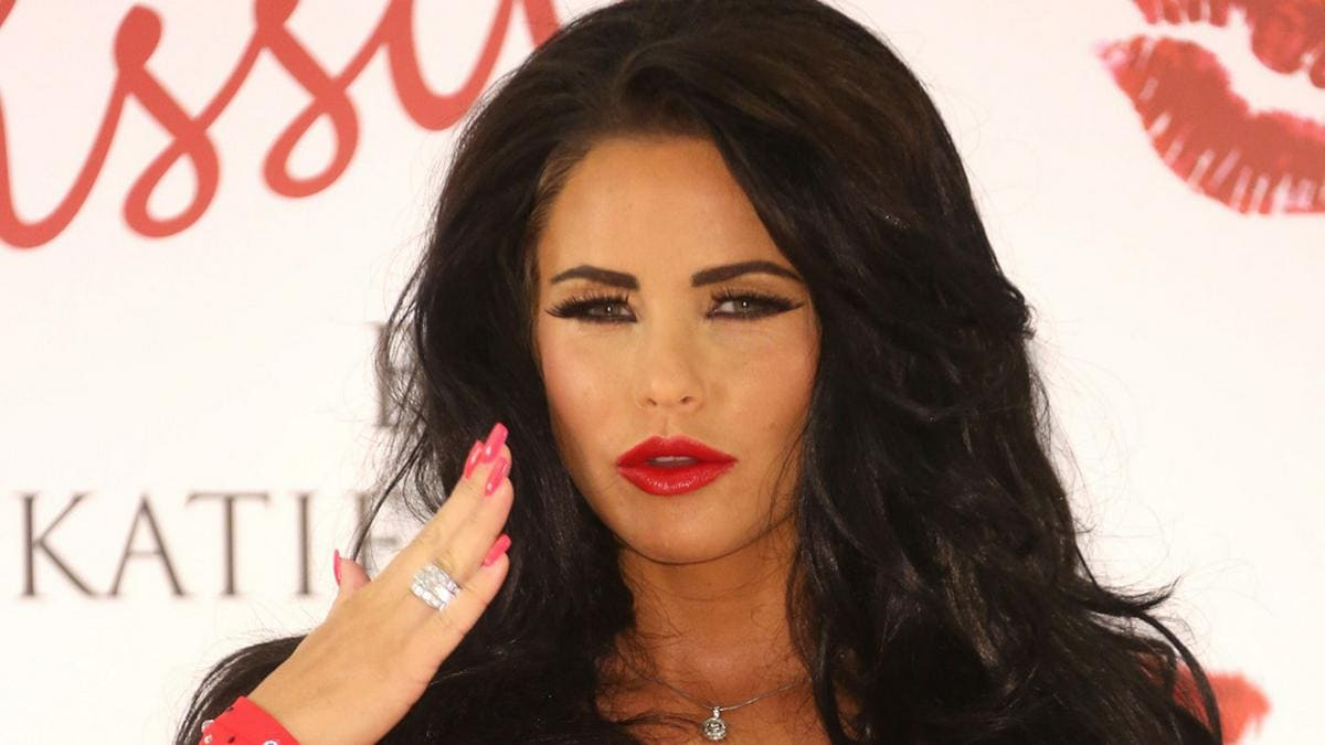 Fünffach-Mama Katie Price will weitere Kinder.. © Shutterstock.com / Featureflash Photo Agency