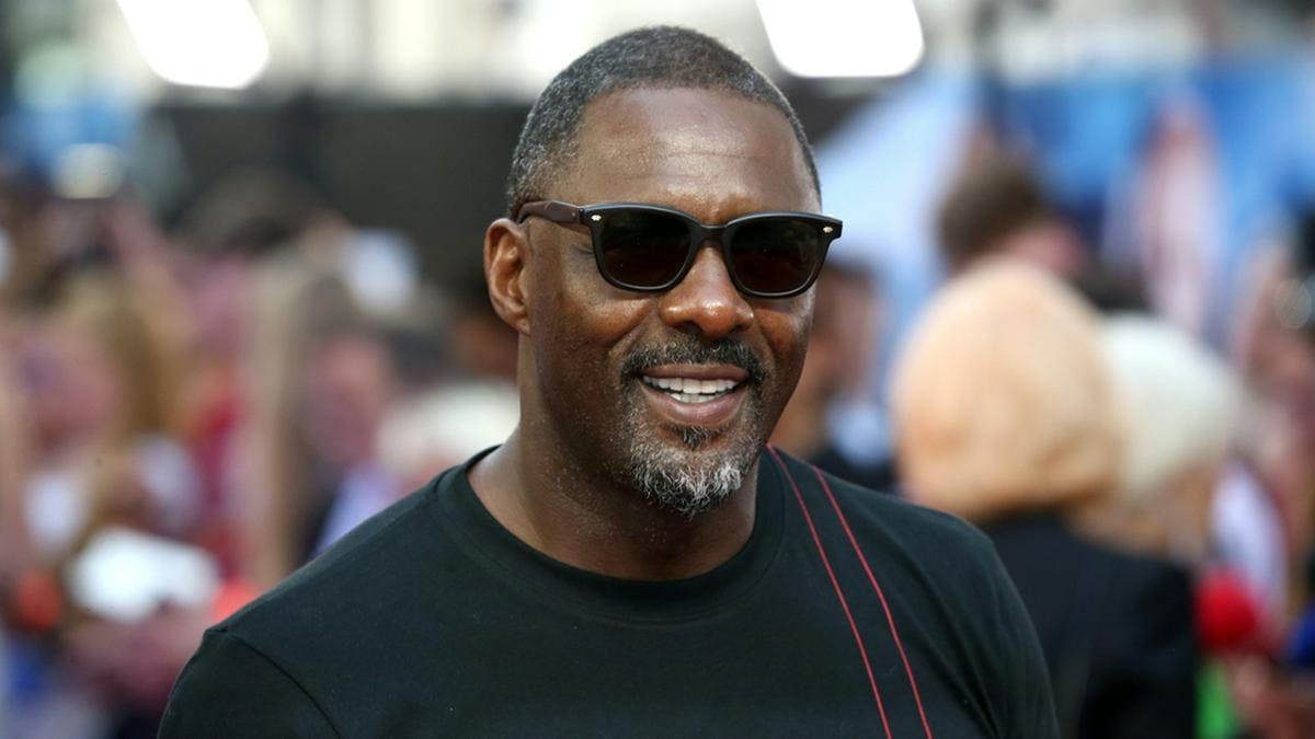 Schauspieler Idris Elba ist ein Multitalent.. © Cubankite / Shutterstock.com