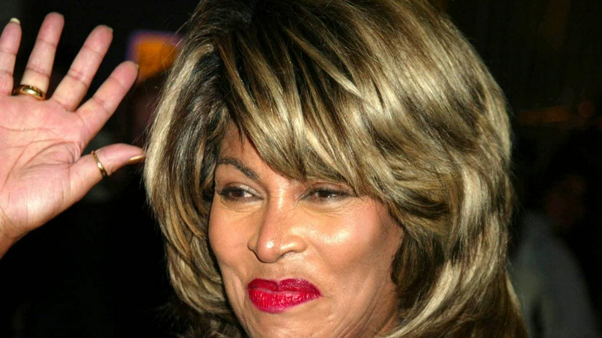 Tina Turner bei einem Auftritt in New York. © Henry Mcgee/Globe Photos