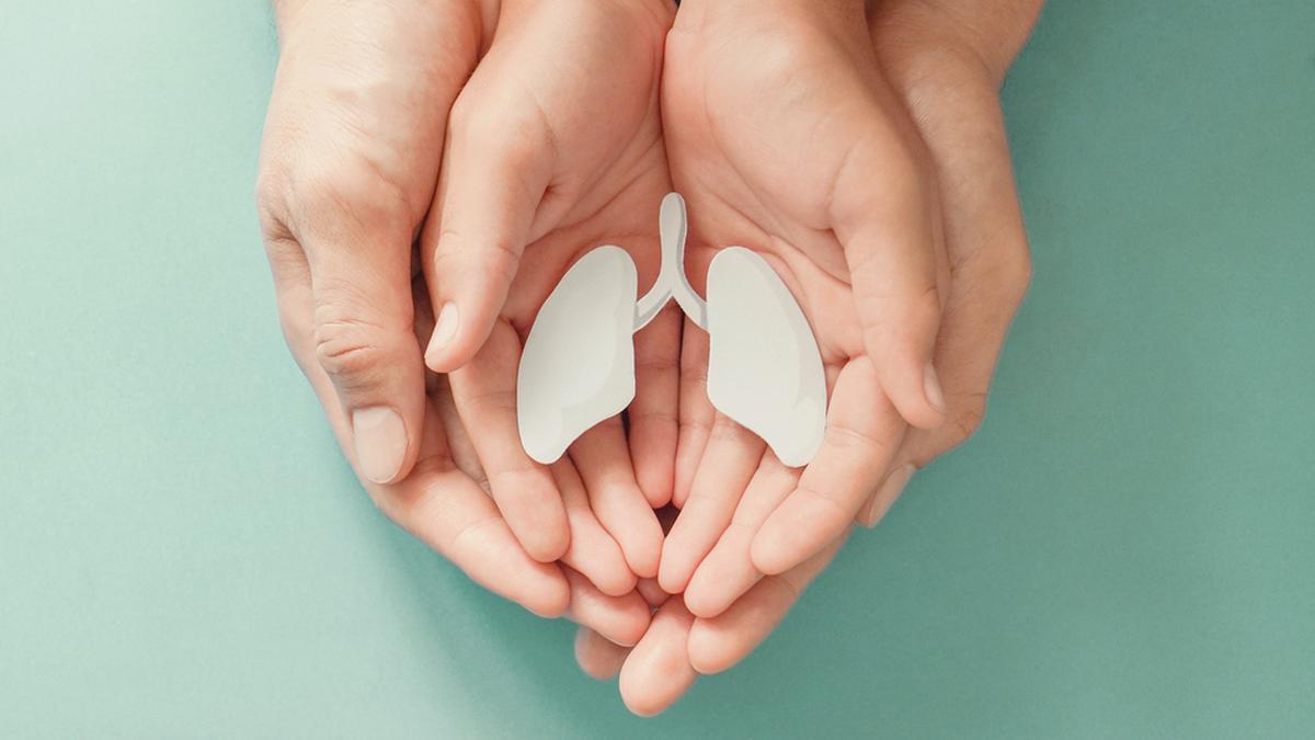 Tuberkulose betrifft häufig die Lunge.. © SewCream / Shutterstock.com