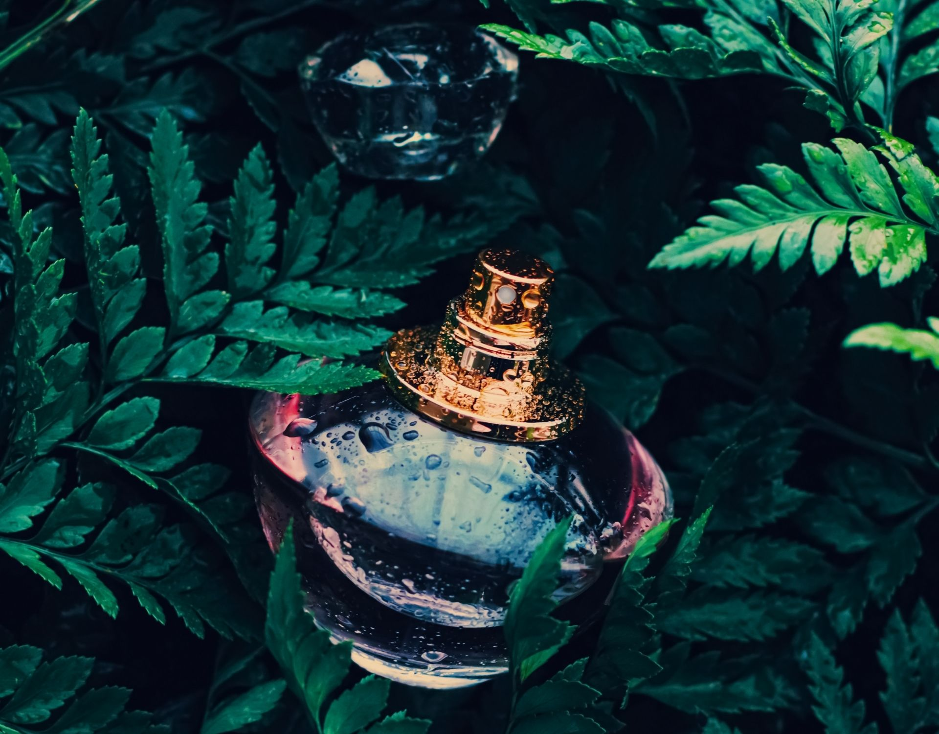 parfum in wald natur aufbewahrung