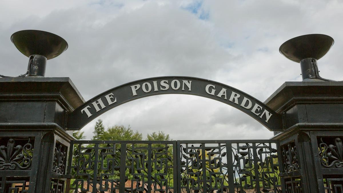 """Der """"Poison Garden"""" von Alnwick liegt in Northumberland im Nordosten Englands.. © Jiri Vondrous/ Shutterstock.com"""