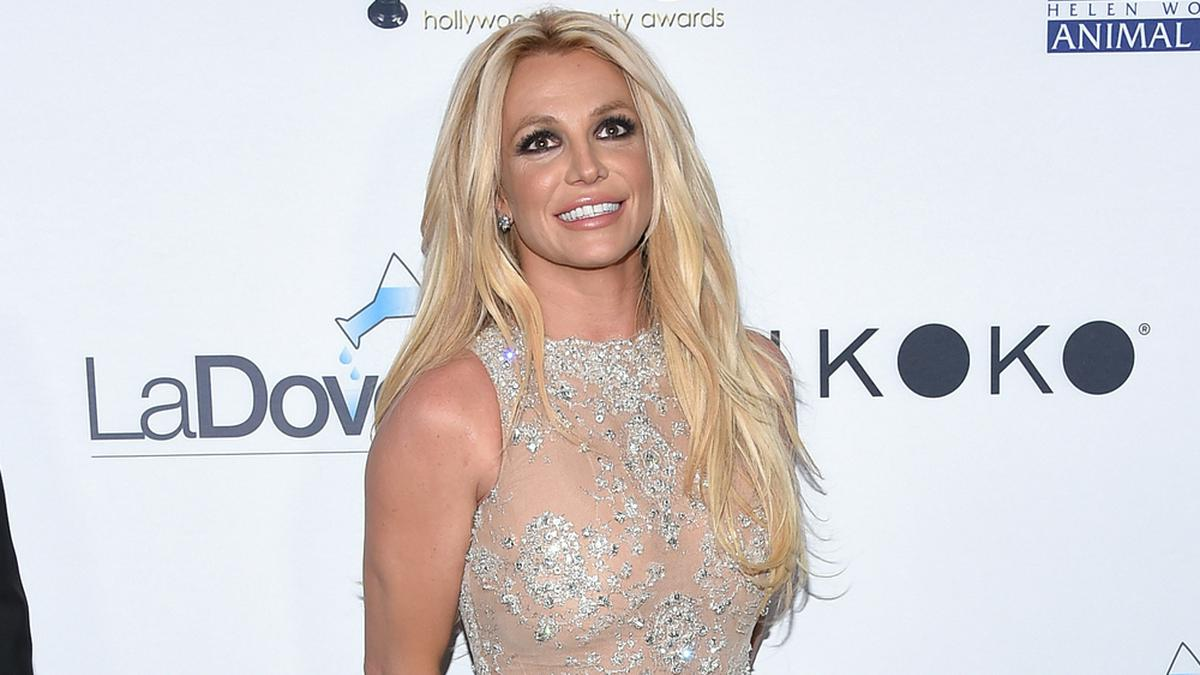 Britney Spears auf dem roten Teppich. © DFree/Shutterstock.com