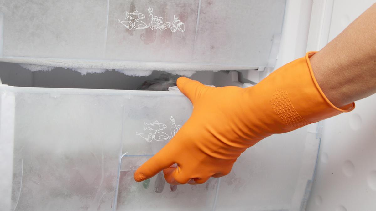 Der Gefrierschrank sollte zweimal im Jahr abgetaut werden.. © Janis Smits / Shutterstock.com