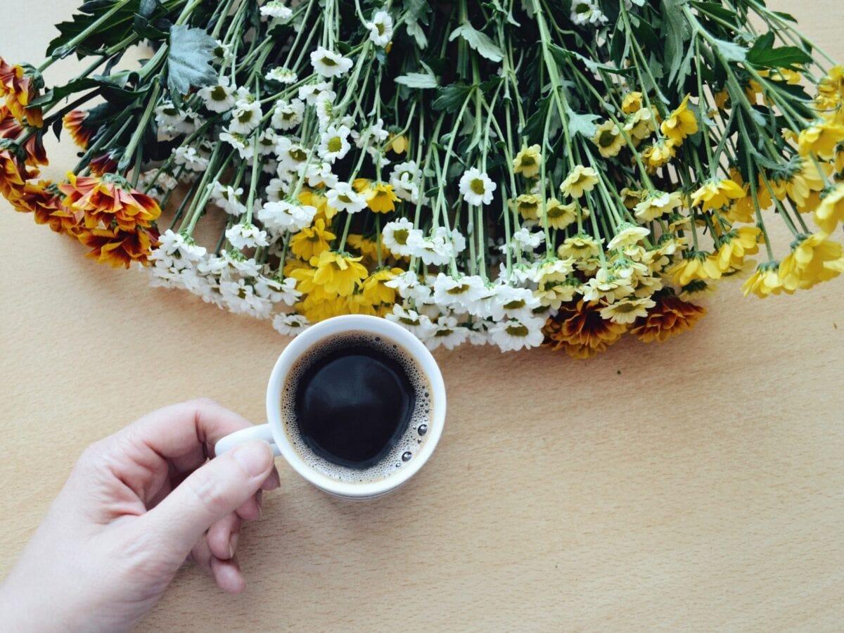 Kaffeesatz verwenden Blumen Kaffee