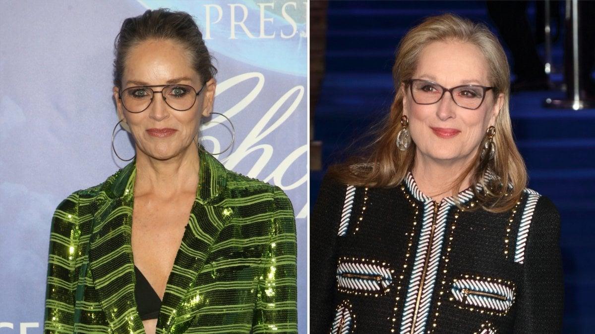 Für Sharon Stone (l.) hat der Hype um Meryl Streep ungesunde Ausmaße angenommen.. © [M]FS/AdMedia/Landmark Media/ImageCollect.com