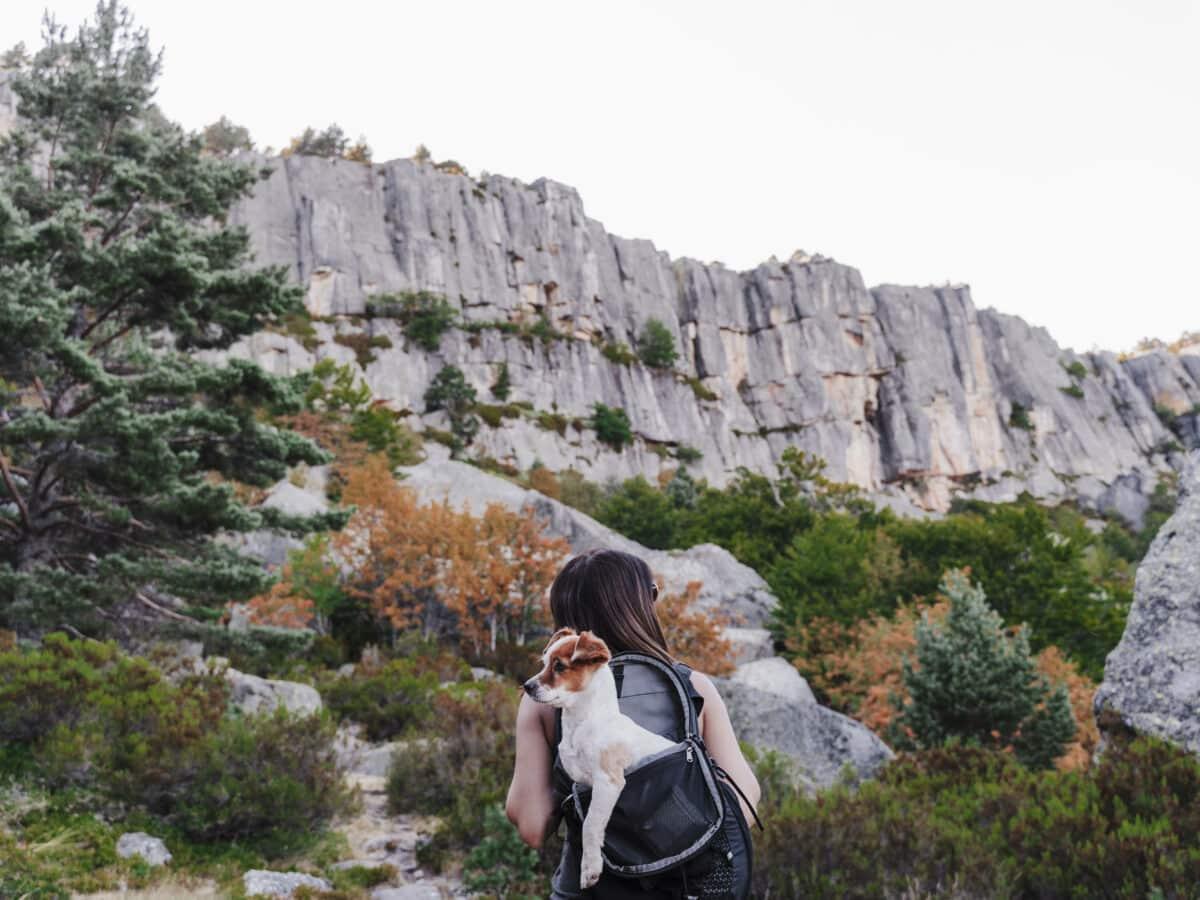Frau mit Hund in den Bergen