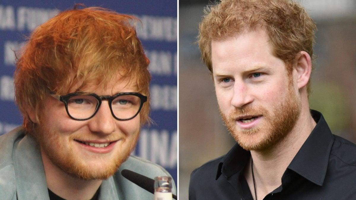 Die Väter Ed Sheeran und Prinz Harry sprachen bei den WellChild Awards auch über Kindererziehung.. © [M] Bart Lenoir/Shutterstock.com / T.O.Pictures/Shutterstock.com