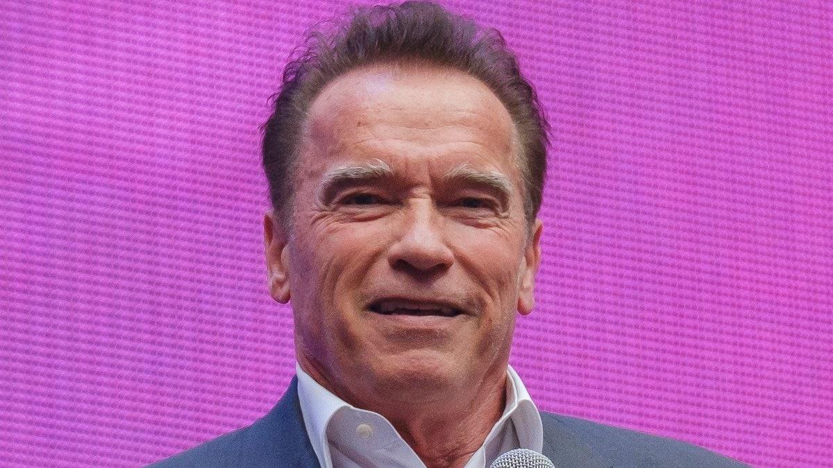 Arnold Schwarzenegger hat sein Talent an der Orgel gezeigt.. © Anton Gvozdikov/shutterstock.com