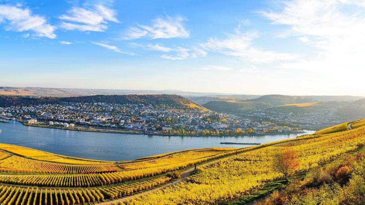Das Niederwalddenkmal bietet eine traumhafte Aussicht auf den Rhein.. © Shutterstock.com/Mikalai Nick Zastsenski