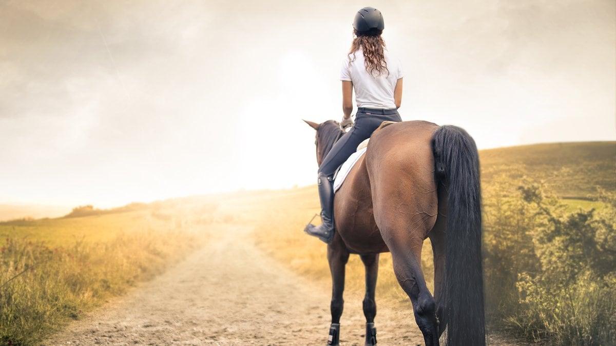 Für Pferdefans ist ein Urlaub auf dem Bauernhof genau das Richtige.. © 2017 Merla/Shutterstock.com