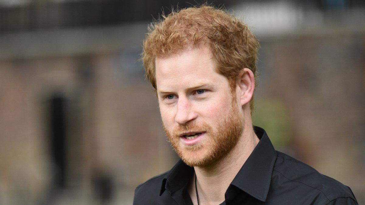 Prinz Harry steht in der Kritik.. © Bart Lenoir/Shutterstock.com