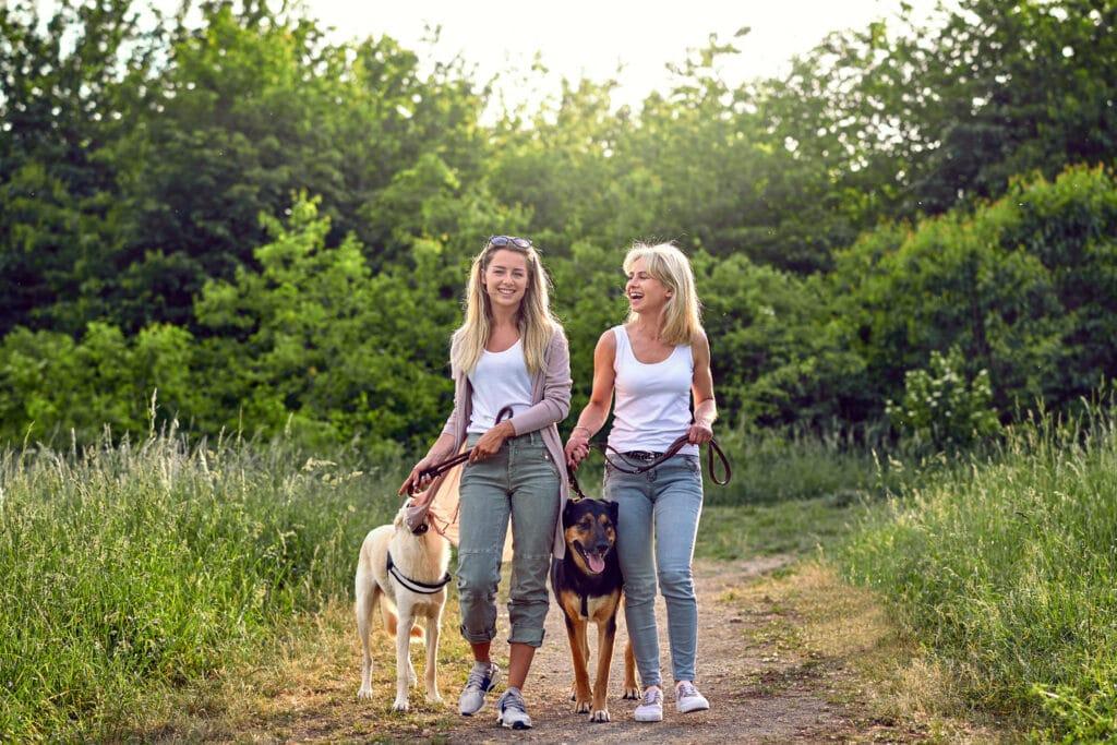 Frauen Hunde