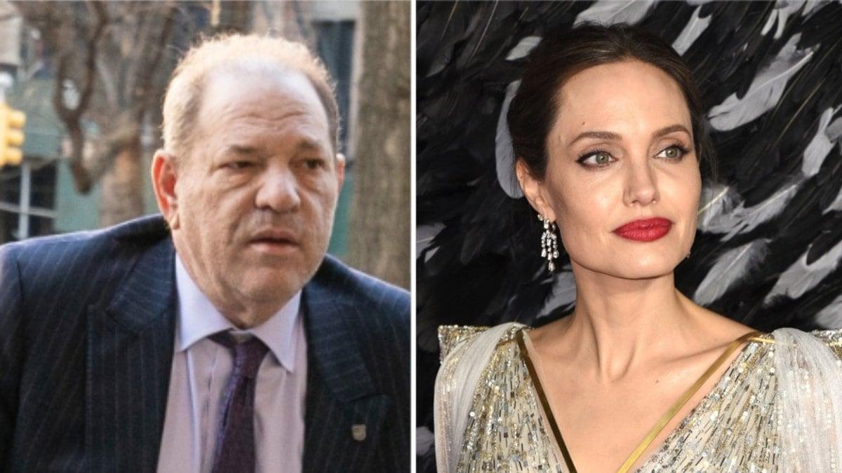 Auch Angelina Jolie soll als junge Frau von Harvey Weinstein attackiert worden sein.. © lev radin/Shutterstock.com / Vivienne Vincent/Landmark Media/ImageCollect.com